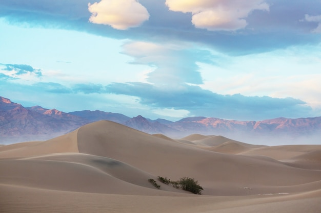 데스 밸리 국립 공원, 캘리포니아, 미국의 모래 언덕