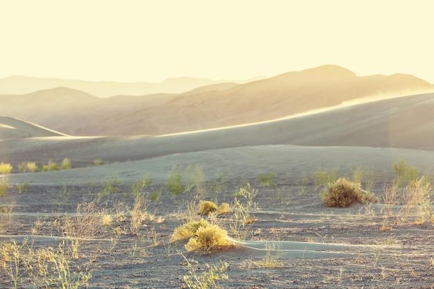サハラ砂漠の砂丘