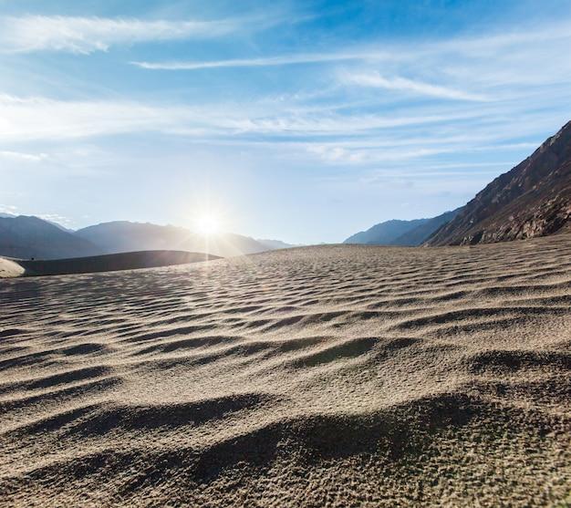 砂丘。ヌブラ渓谷、ラダック、インド