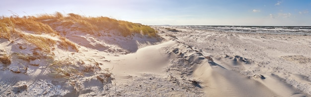 Sand dunes and sandy beach in hiddensee island on the baltic coast of germany, panorama