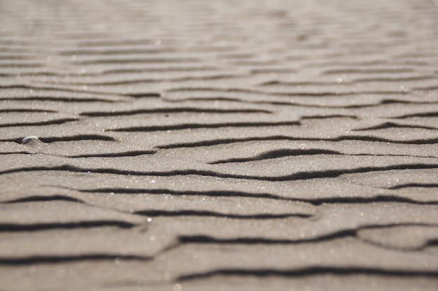 砂浜に波紋