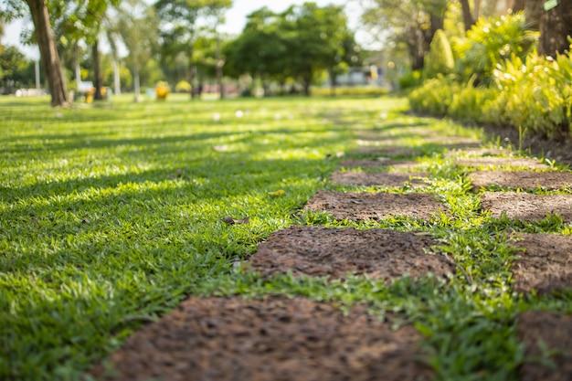日光と庭の芝生の上の砂の石の歩道。