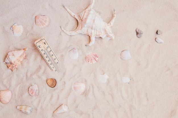 조개와 온도계와 모래 표면
