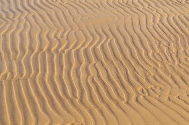 모래 질감 배경입니다. 여름과 휴가 개념. 물결 모양의 모래 클로즈업과 바다 해안입니다. 상위 뷰, 복사 공간.