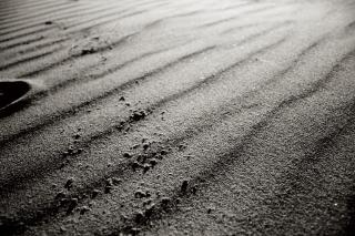Sand texture  sand