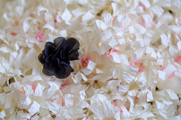 Sandalwood flowers