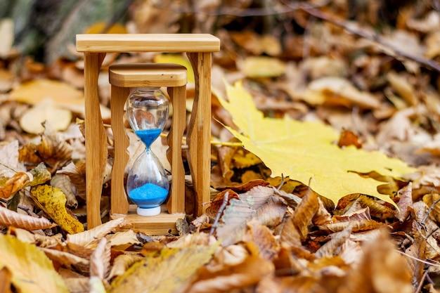 乾燥した紅葉の砂時計と黄色のカエデの葉