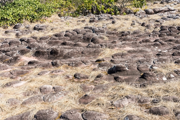 Sandstone node field