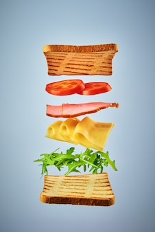 Sandwich with flying ingredients on the blue.