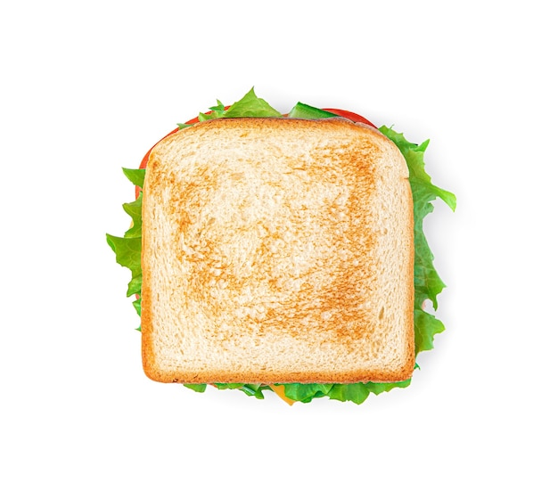 Sandwich with vegetables cheese and turkey on a white background