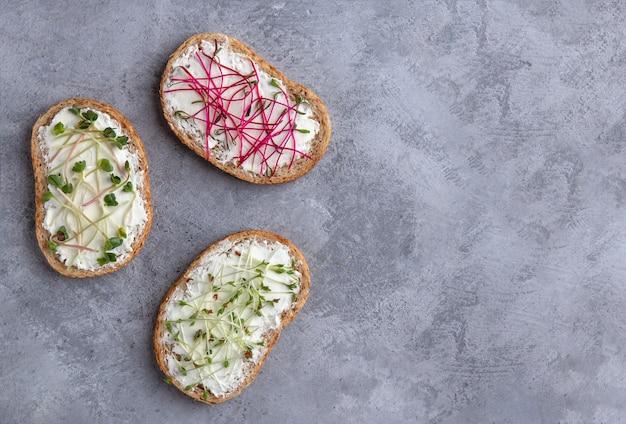 Бутерброды с сыром и микро зеленью на сером фоне