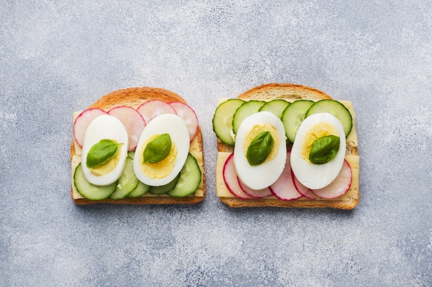 Sandwiches with egg cheese, fresh cucumber and radish.