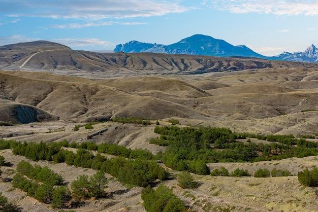 Песчаные и меловые холмы с укрепляющими почками лесами