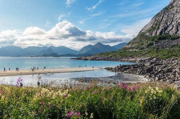 Sandy beach on the coast of the norwegian sea, lofoten archipelago, norway