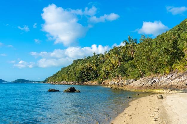 Песчаный пляж райского необитаемого тропического острова. пальмы нависают на пляже. белый песок. голубая вода океана. отдохни от людей