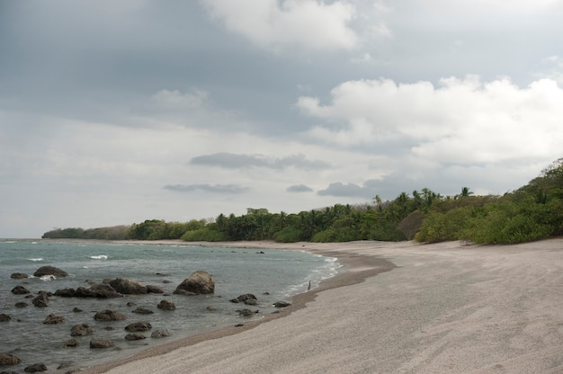 Sandy beach with encroaching trees, with rocks in the surf, on an overcast cloudy day