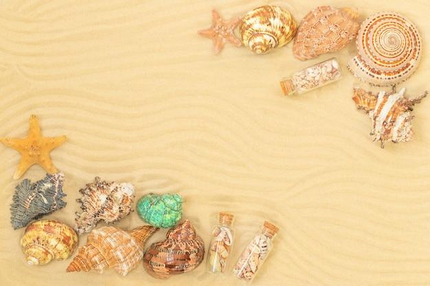 貝殻のフレームと砂浜