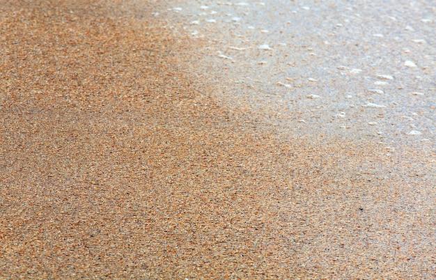 Sandy-破損したコックルシェルの湿った海の背景(シャープネスの深さが浅い)