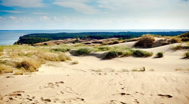 Серые песчаные дюны в литве