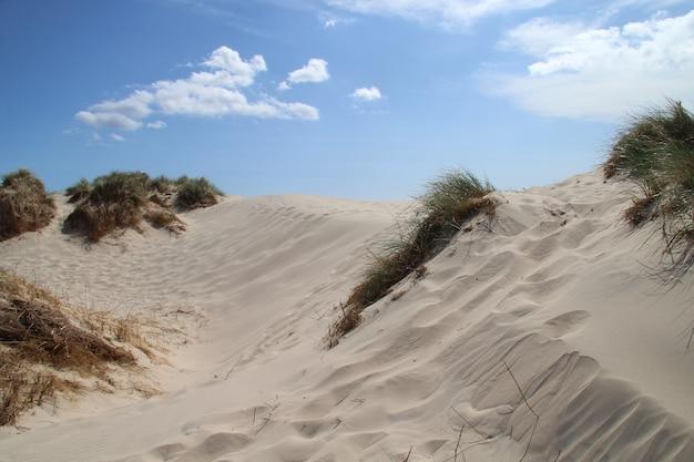 Песчаные холмы под ярким голубым небом в rabjerg mile, дания