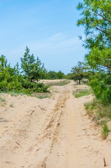 競争のためのトラック上の砂の道
