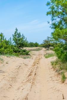 Песчаная дорога на трассе для соревнований