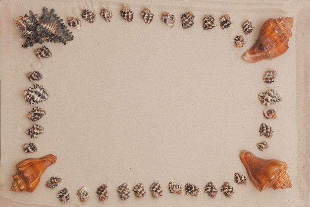 Sandy surface with frame made of seashells