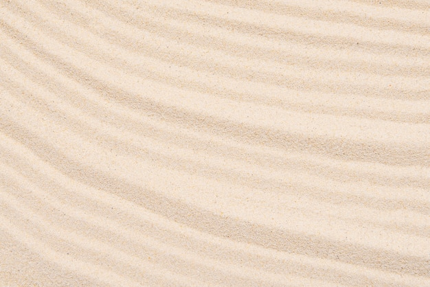 Sandy texture, abstract lines on the top of soft sand background Premium Photo