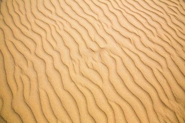 砂浜の波、セイロン海岸のビーチ。スリランカの砂、インド洋