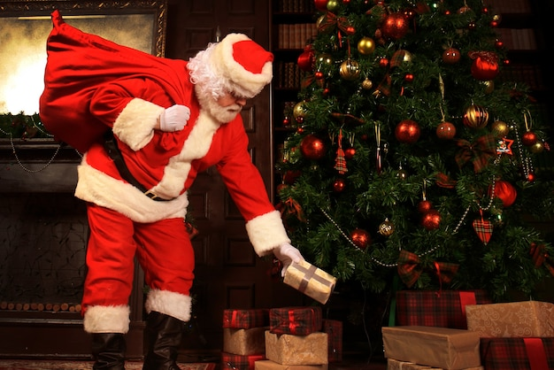 Santa claus bring the sack with gifts for christmas.
