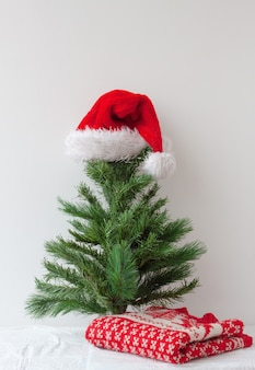 A santa claus hat is put on a small artificial christmas tree and a christmas sweater is lying next ...