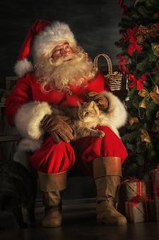 Санта-клаус сидит возле елки