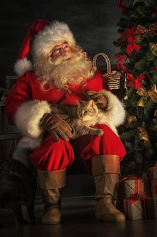 Santa claus sitting near christmas tree