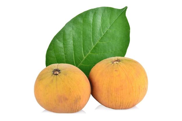 Santol fruit isolated on white background.