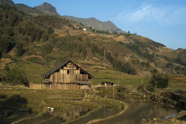 Sapa, lao cai, vietnam - march 21, 2011: wood house of traditional farmers family in the rice paddy fields of sapa