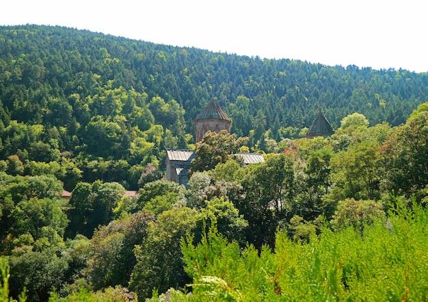 Монастырь сапара - исторический грузинский православный монастырь среди зеленых лесов каньона грузия