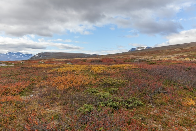 Sarek national park in lapland view from the mountain