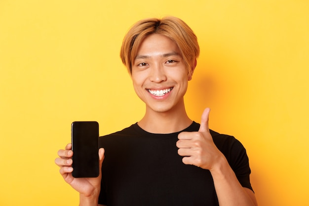 黄色の壁の上に立って、承認とスマートフォンの画面で親指を立てる、公正な髪のハンサムな若いアジアの男に満足