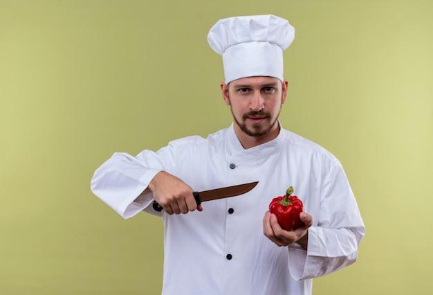 満足しているプロの男性シェフが白い制服を着て調理し、ピーマンと緑の背景に自信を持って立っているナイフを保持している帽子を調理します。