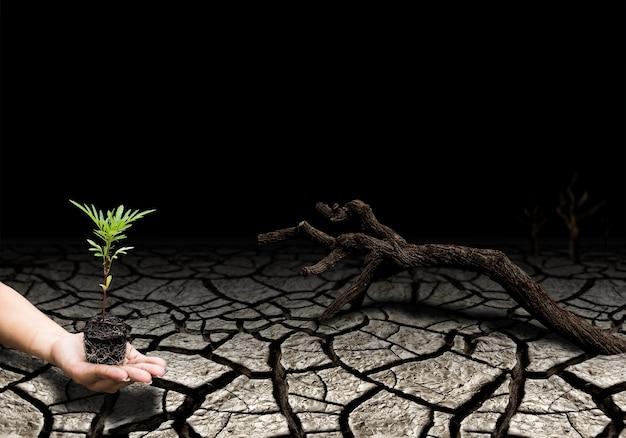 지구를 구하는 생명, 세계 환경의 날 개념. 환경 재해 및 복구. 토양 가뭄은 금이 가고 건조합니다.