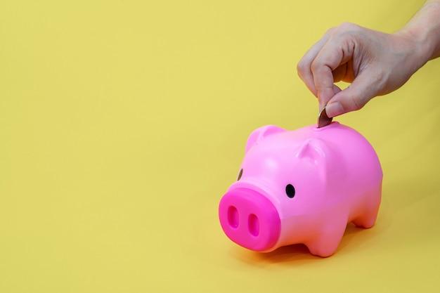 돈 동전을 저축하고 돼지 저금통에 넣으십시오.