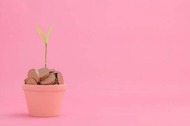 Экономьте деньги, инвестируйте в акции, растите финансово.