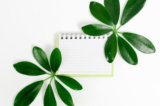 Сохранение экологических идей планирует создание экологически чистых продуктов, органических материалов, садоводства.