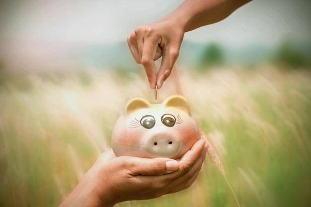 자연 배경에 piggybank에 동전을 넣어 돈 개념 손을 절약