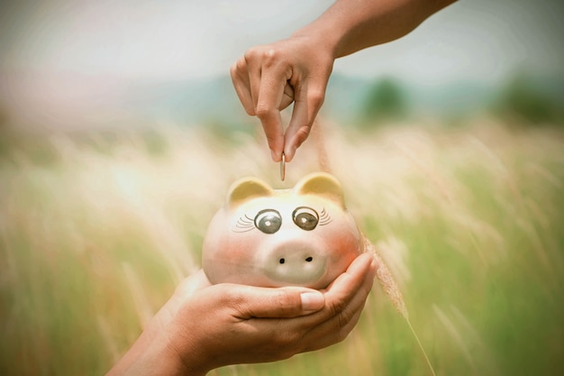 Saving money concept hand puting coins in piggybank on nature background