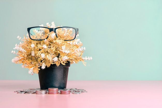 Saving money, fake flower pots with glasses on the leaves and money coins.