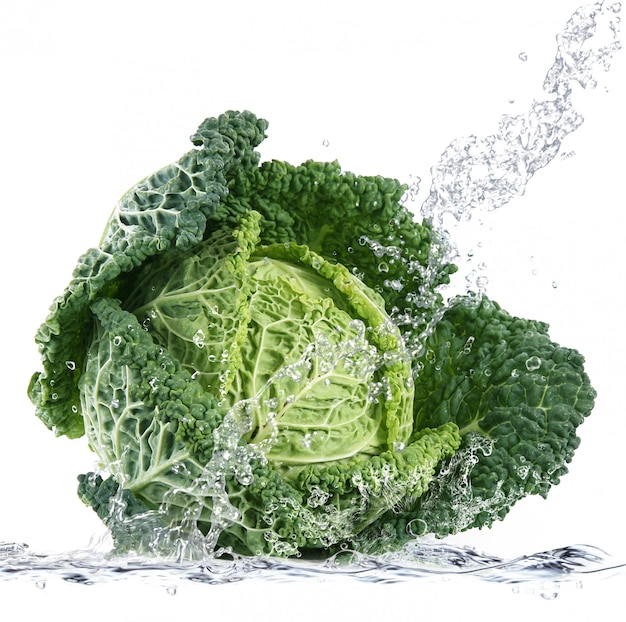 Savoy cabbage falling in water