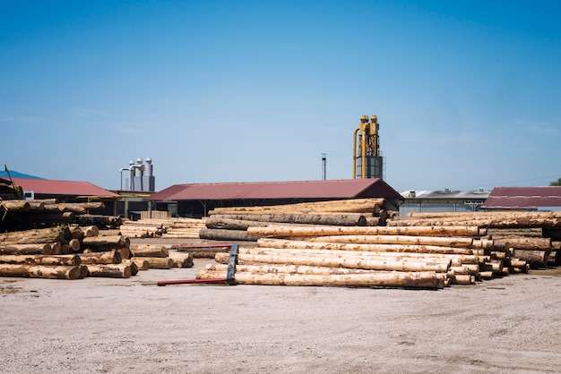 Sawmill factory for lumber planks production