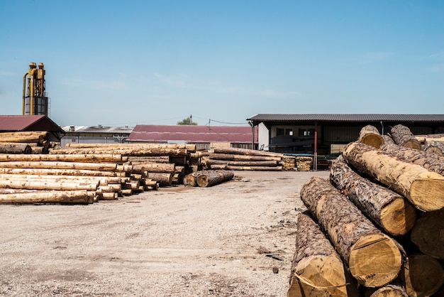 Sawmill factory for wood processing.