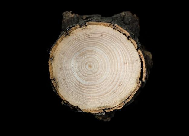広葉樹の木目の断面を露出する丸太をのこぎりで切る